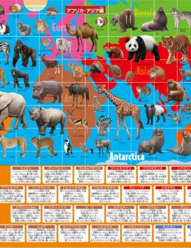 動物クリアファイル(アフリカ・アジア編)