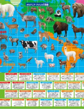 動物クリアファイル(オセアニア・アメリカ大陸編)
