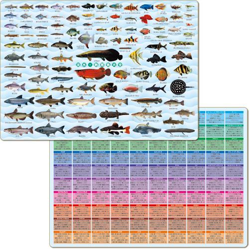 淡水・熱帯魚大全下敷き