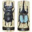 ドラゴン先生のリアル甲虫マグネット(全4種)