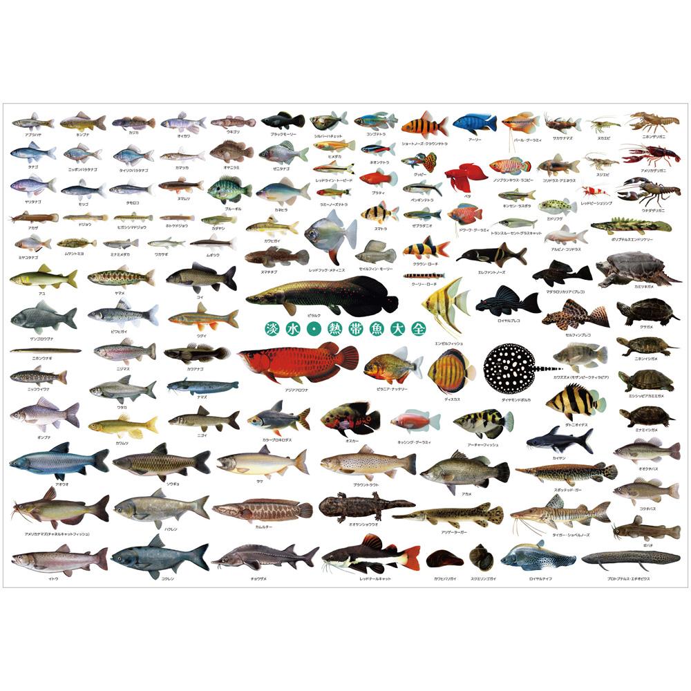 淡水・熱帯魚大全A1ポスター