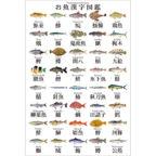 ポストカード:お魚漢字