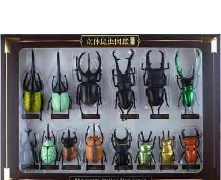 立体昆虫図鑑DX