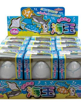 海玉(全6種)