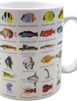 大全マグカップ:海魚大全