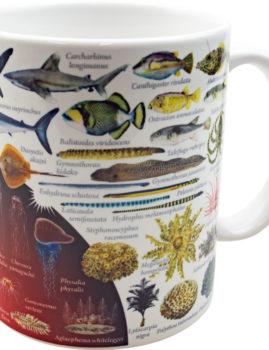 大全マグカップ:海の危険な生き物