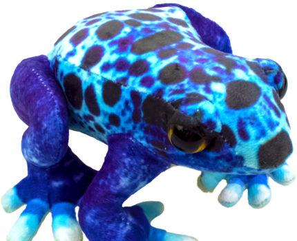 プリントぬいぐるみ カエル:コバルトヤドクガエル