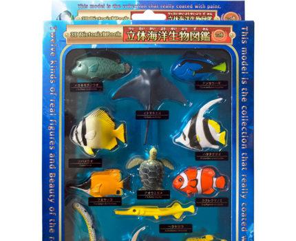 立体海洋生物図鑑Vol.1