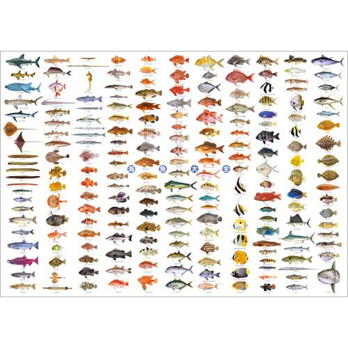 海魚大全 A1ポスター