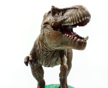 ポリレジン恐竜フィギュア:ティラノサウルス
