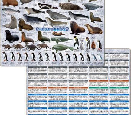 ペンギン・海獣大全 下敷き