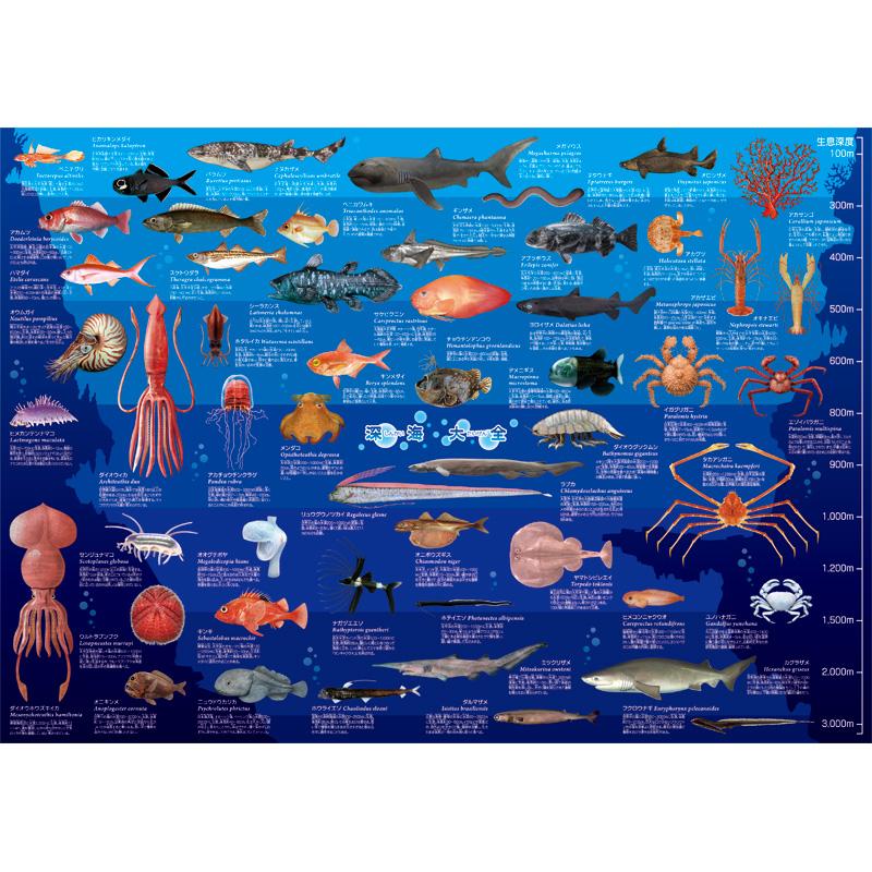 深海大全 A1ポスター