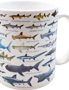 大全マグカップ:鮫大全