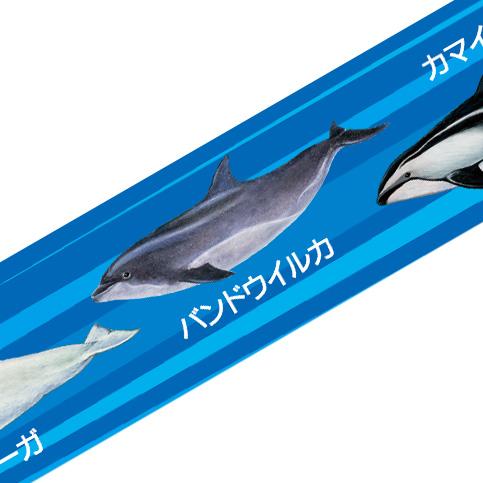マスキングテープ:M005:水族館の人気者